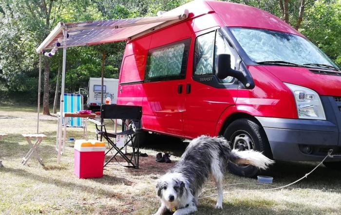Furgoneta gos mascota al camping